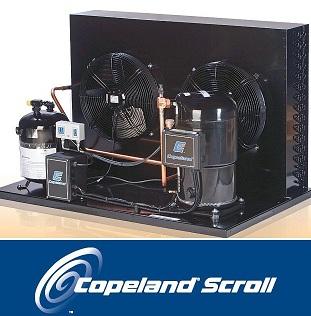 Copeland Scroll